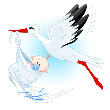 stork-carrying-a-baby-vector-27496